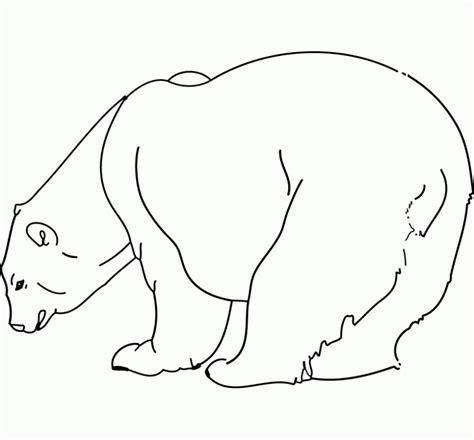 imagenes de animales carnivoros para colorear dibujos para colorear animales salvajes oso dibujos