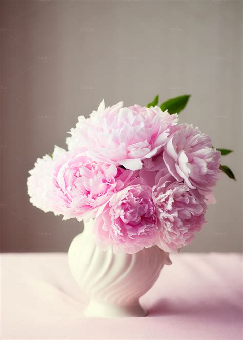 peonies in vase fresh cut pink peonies in a vase nature photos on
