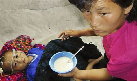 cannibalism in north korea royal and doodall north korea begs for food aid from mongolia as starving
