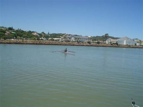 ski boat club port alfred nemato rowing club activities