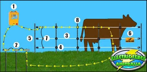 how to a with an electric fence what parts do i need to build a basic electric fence setup electric fence australia