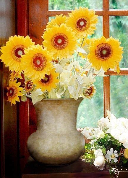 vaso con girasoli fiori e piante