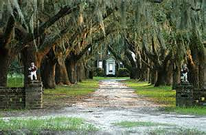 1000 images about beaufort plantation station on