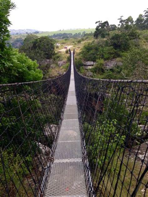 oribi gorge swing price suspension bridge picture of oribi gorge hotel port