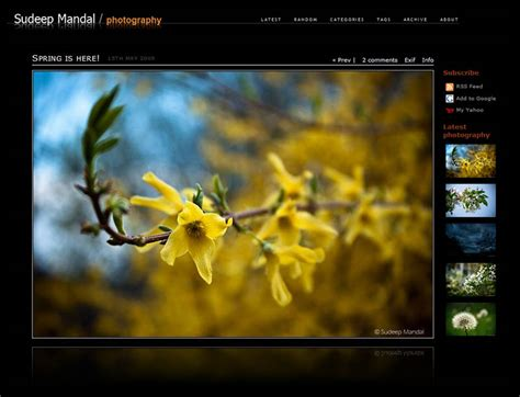 wordpress photoblog themes reflection mod photoblog theme for wordpress bits and