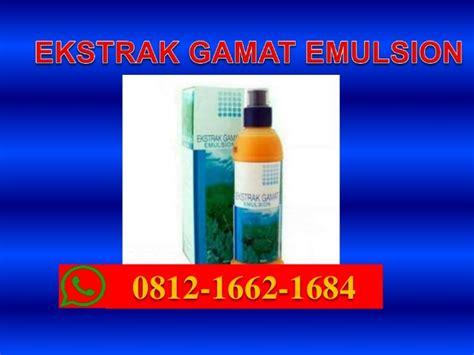 Extract Gamat Emulsion K Link gamat k link kista hp wa 0812 1662 1684 t sel gamat k link untuk