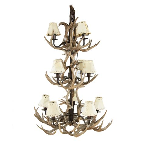 Chandelier Coues Deer Antler Art By God Nature Store Antler Chandelier Shop