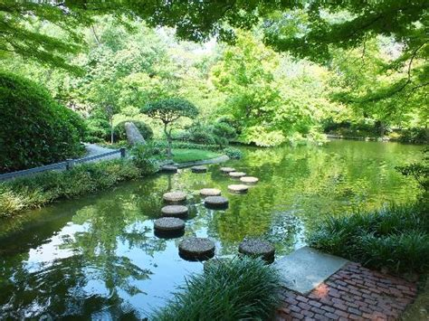 Fw Botanical Gardens Stepping Stones Across The Pond Picture Of Fort Worth Botanic Garden Fort Worth Tripadvisor
