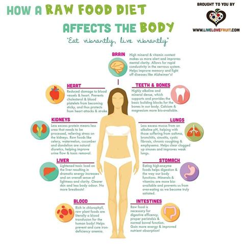 Vegan Detox Diet Side Effects by How A Food Diet Affects The Live Fruit R
