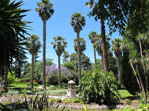 Williamstown Botanic Gardens Williamstown Botanic Gardens Top Tips Facts Before You Go Updated 2017