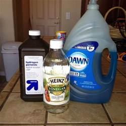 Vinegar In Carpet Cleaner 1000 Ideas About Steam Cleaner Solution On