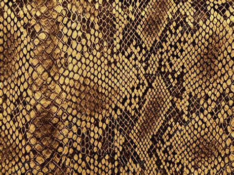 pattern photoshop snake black and white cloth background texture pics stock
