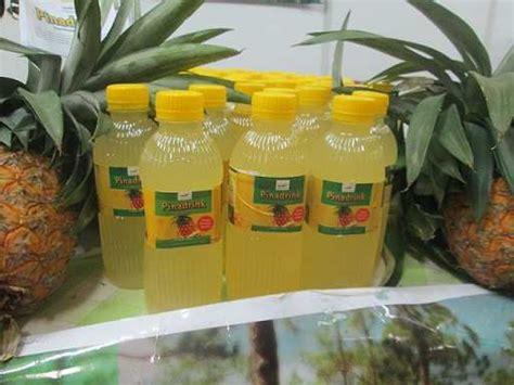 Botol Minuman Karakter 300ml pinadrink minuman sari buah nanas khas subang