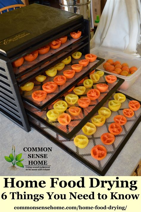 Dehydrator Food home food drying 6 things you need to to dehydrate