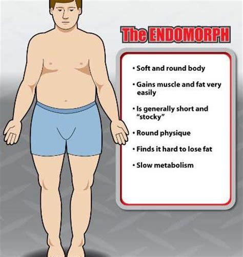 healthy fats for endomorph endomorph type complete guide fitnessmonster net