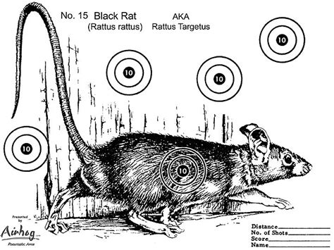 printable rat targets 35 best images about nike holiday on pinterest shades of