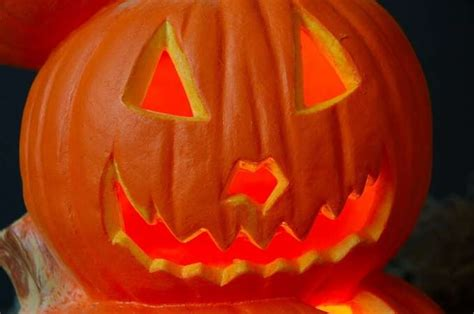 pumpkin origin facts for familyeducation familyeducation