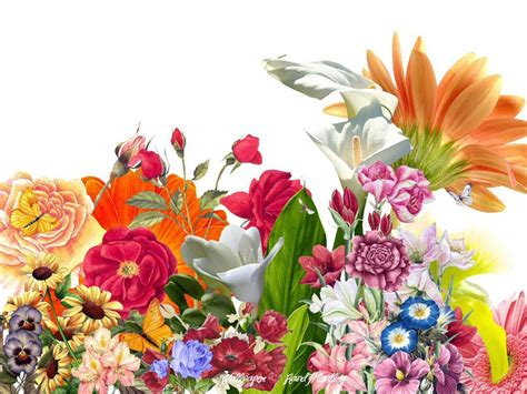 wallpaper flower graphic flower backgrounds flower1 myspace graphic code preview