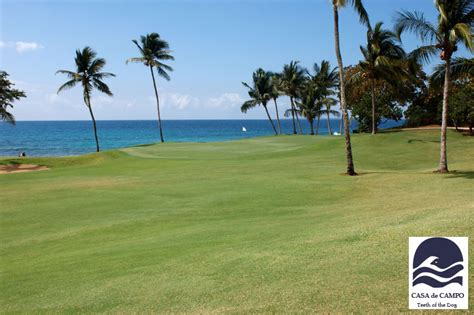 sea dogs definition high definition golf interactive sports technology golf and indoor golf