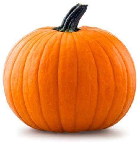 pumpkin pictures for home www gailspumpkinpatch