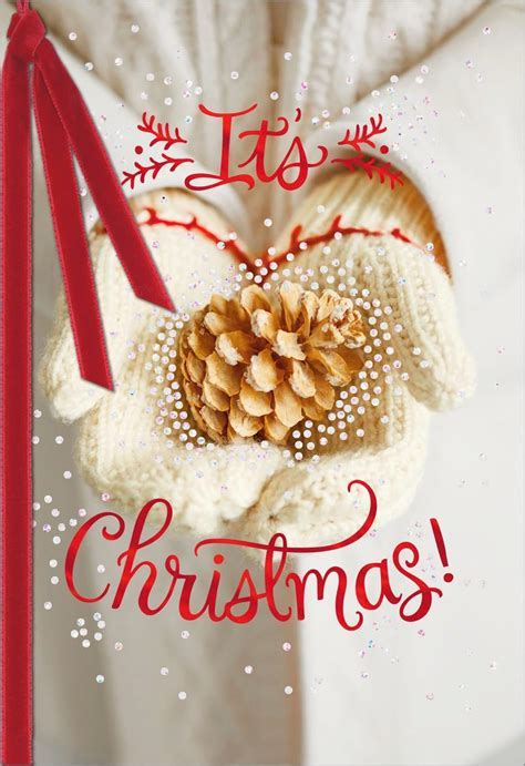 Holiday Mittens Blank Christmas Card   Greeting Cards