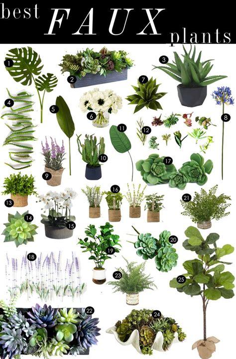 best decorative house plants best 25 artificial plants ideas on pinterest artificial