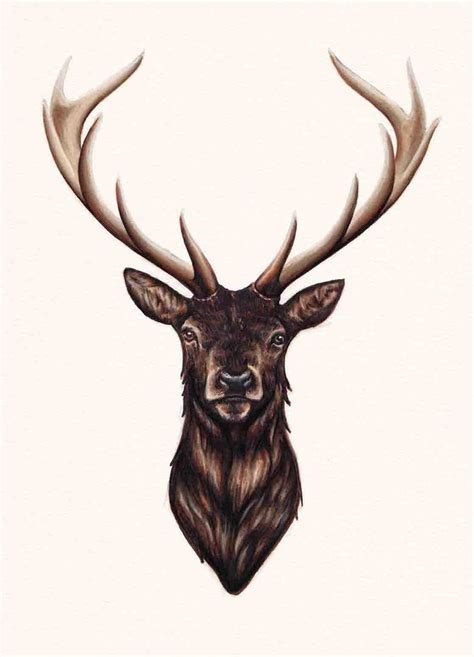 stag tattoo best 25 stag ideas on deer stencil