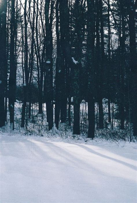 fotos tumbrl invierno likes tumblr fotograf 237 a pinterest paisajes