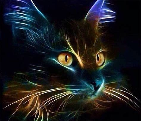 lights cat dynamic and dramatic black and yellow neon light cat