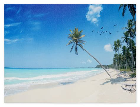 Home Design 60 X 40 wandbild fotodruck keilrahmen bild strand palmen meer