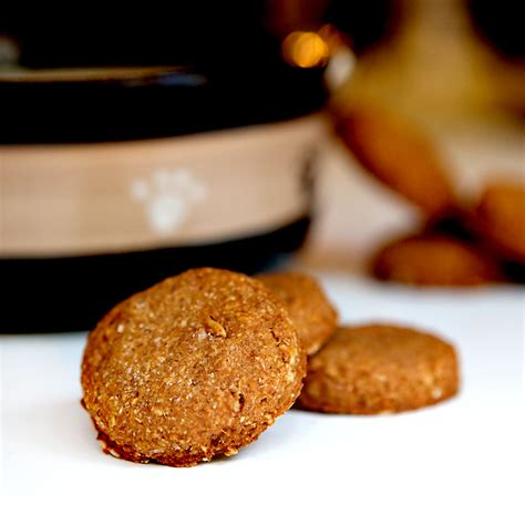 peanut butter cookies for dogs peanut butter treats brownie bites