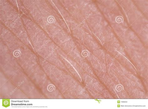 human skin texture up macro of brown person clean skin stock image image of macro of skin texture stock images image 7306034