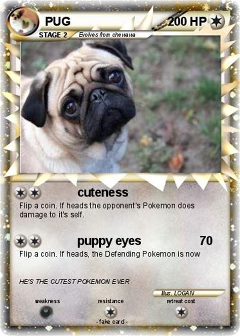 pug cards pug cards images images