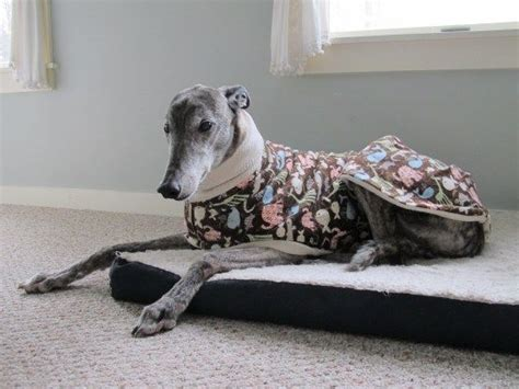 pattern for greyhound dog coat tutorial diy pattern for lined pyjamas whippet