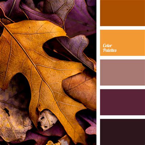 fall color pallette fall color palette color palette ideas