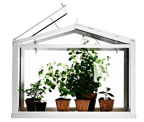 socker greenhouse socker miniature greenhouse ikea decor pinterest