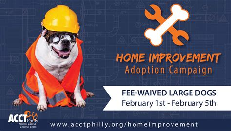 home improvement adoption caign acct philly