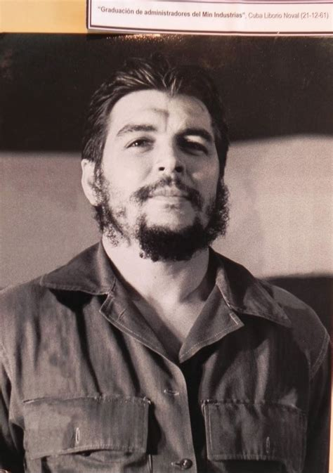 Che Guevara che guevara photos on che guevara who was che