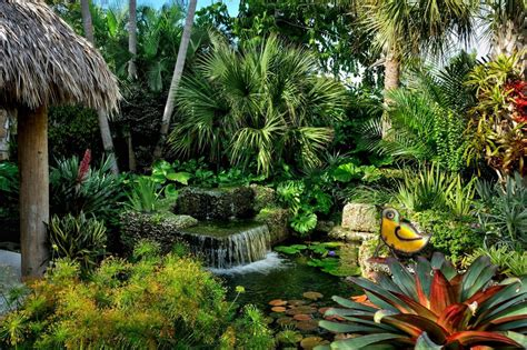 landscape design dilemma  palm loss discussing palm