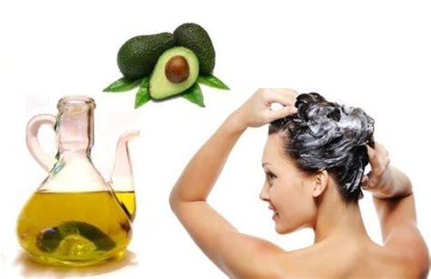 imagenes de tratamientos naturales para el cabello tratamiento a base de palta para el cabello maltratado