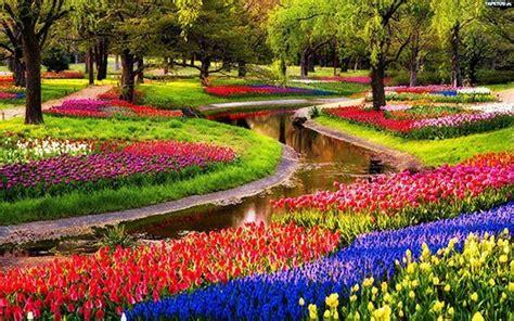 wallpaper bunga paling indah 10 taman bunga paling cantik di dunia tentik