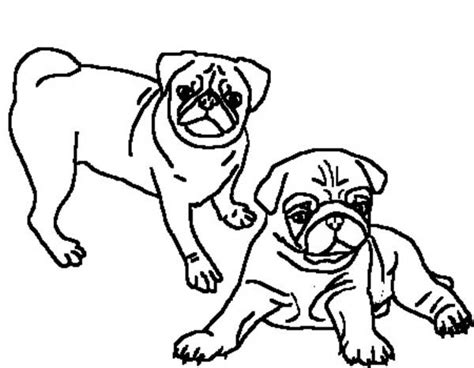 coloring pages of pugs dogs 60 best coloring pugs images on pinterest doggies