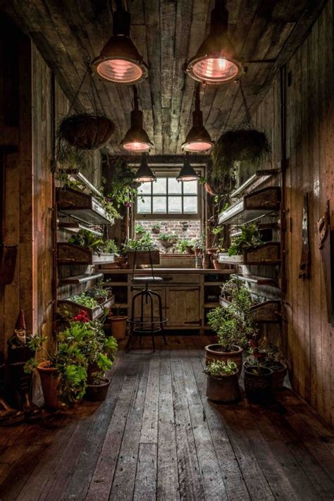Potting Shed Alexandria by The Potting Shed A Green Oasis In Alexandria