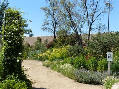 Albuquerque Botanical Gardens Exploring New Mexico Botanical Gardens Albuquerque Nm