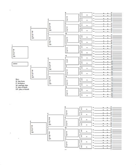 7 generation family tree template free 9 blank family tree templates sle templates