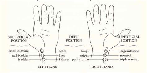 wrist chi pulses chi chuan