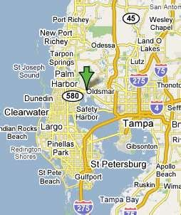 Oldsmar Florida Map by Oldsmar Fl Pictures Posters News And Videos On Your