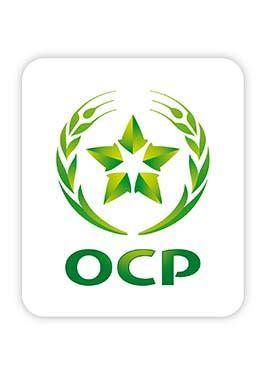 ocp group wikipedia