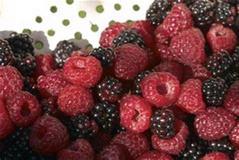 fruit zinc vegetables fruits highest in zinc healthy sf gate