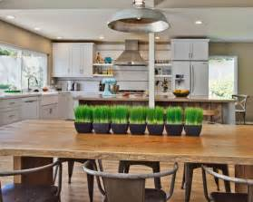 Rustic White Kitchen Cabinets White Distressed Kitchen Cabinets Awesome Modern Rustic White Kitchen My Home Design Journey
